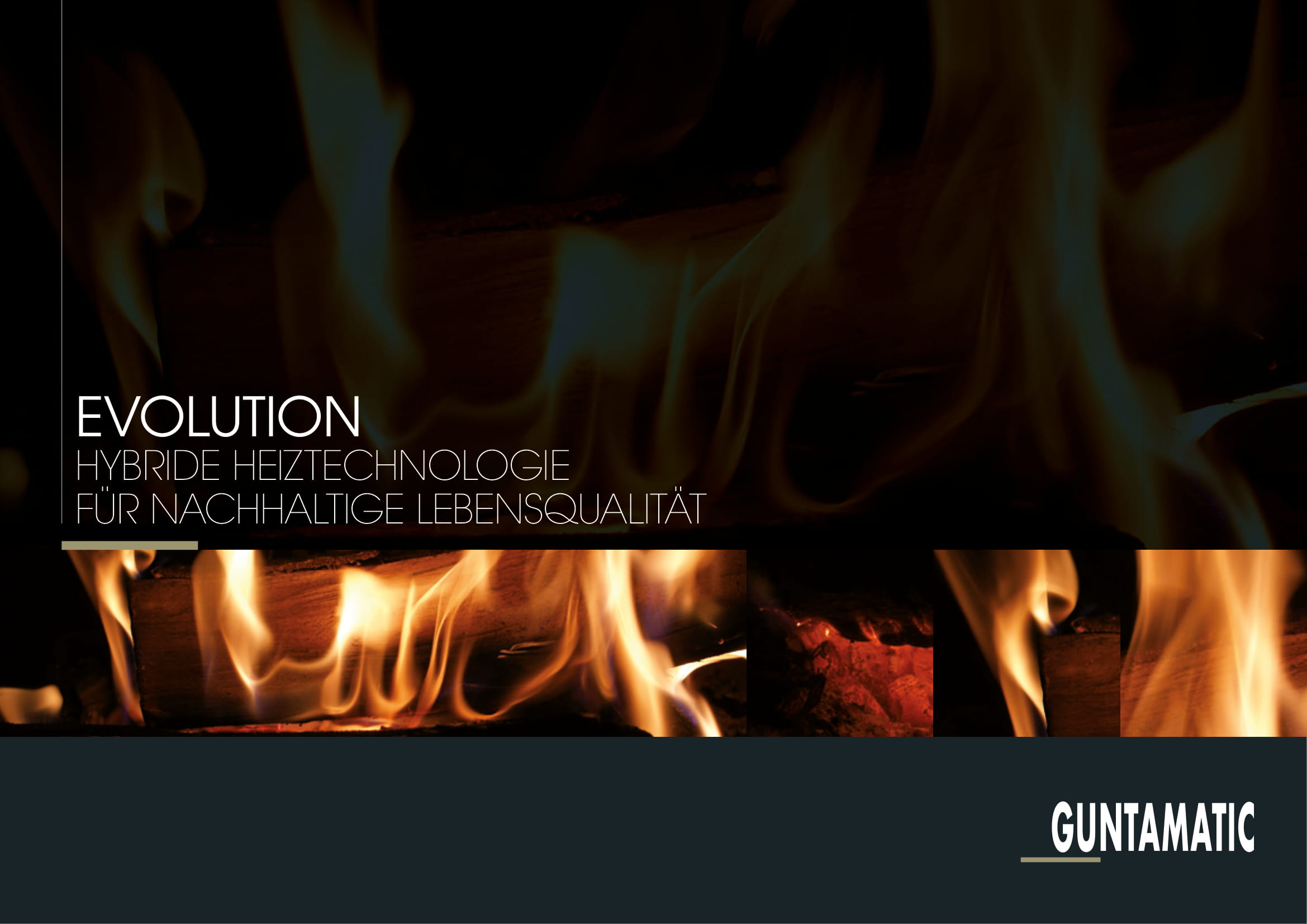 Guntamatic Hybridheizung EVOLUTION